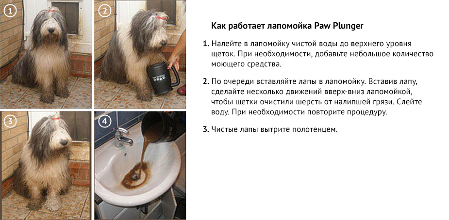 Как работает лапомойка Paw Plunger